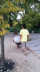 一輪車で運ばれるVIPなタマゴ